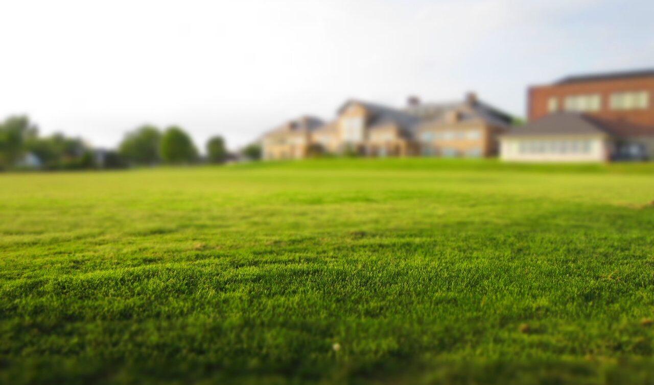 5 moyens pour réussir l'entretien du gazon
