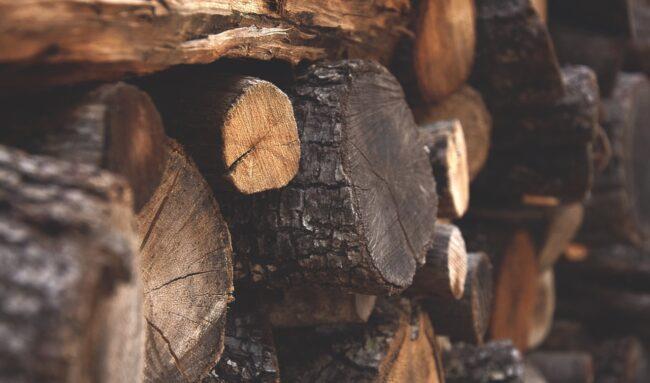 Qu'est-ce qui définit le prix du bois de chauffage ?
