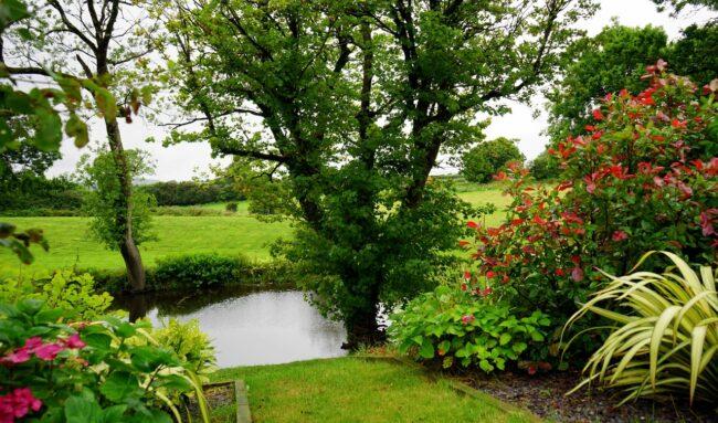 Comment réaliser un jardin à l'anglaise ?