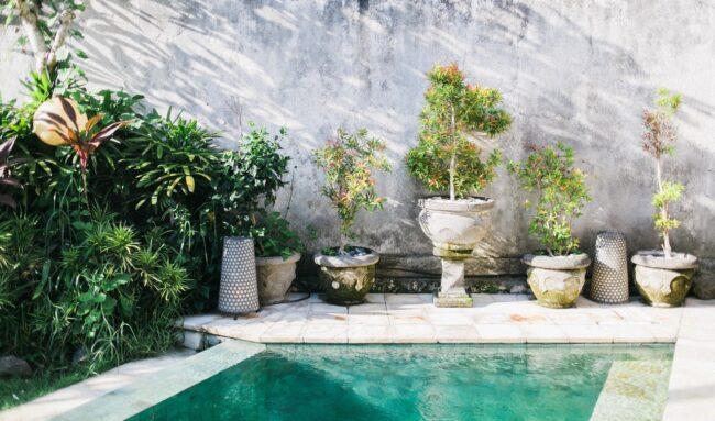 Rattraper une piscine verte en moins de 48h : quelques astuces pour y arriver